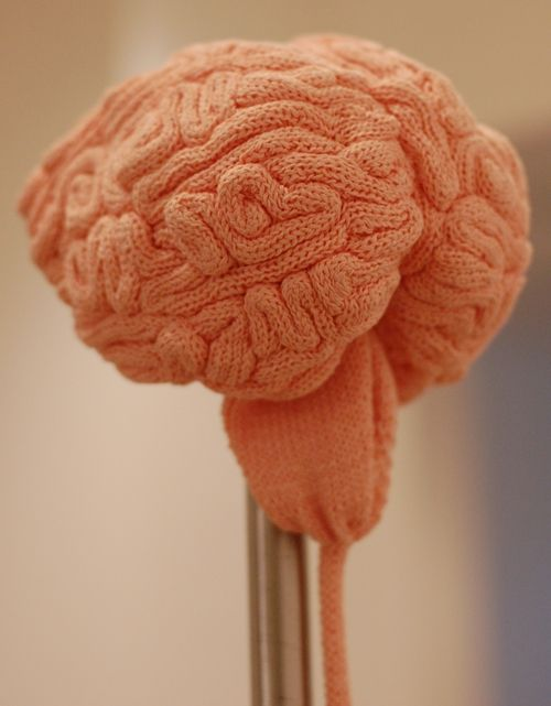 Knitted brains...   I'd like to eventually make this but all the i-cord, yards upon yards of it. But it would look brilliant in a jar.