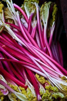 Qorma-e-rawash (rhubarb stew)   Whole30 way to consume rhubarb?! I'll take it!