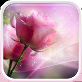 Ροζ τριαντάφυλλα Φοντο Κινητου
