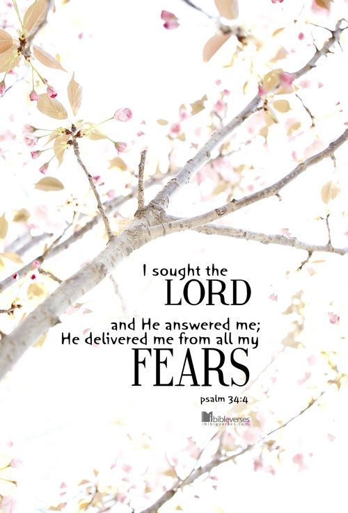Psalm 34:4 - I prayed to the LORD, and he answered me, freeing me from all my fears.
