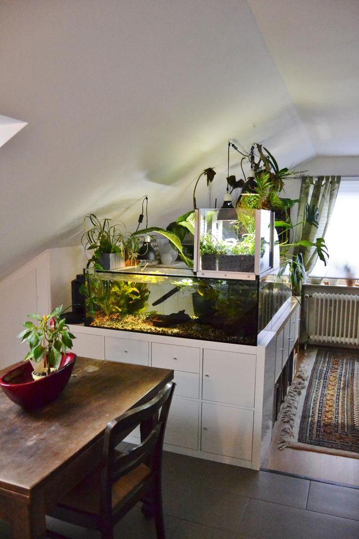 interessant aquarium wohnzimmer - die 25 besten aquarium unterschrank ideen auf pinterest