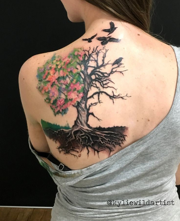 Love The Half Full Half Bare Tree And Roots With Images Tree
