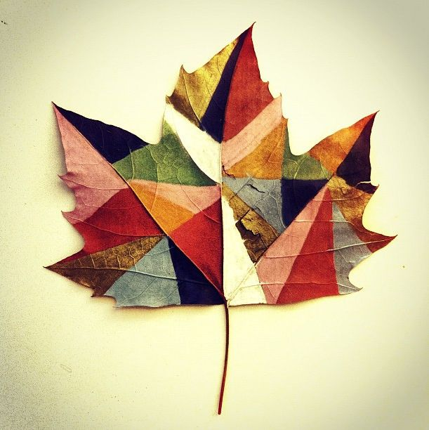 Colorblocked giant leaf