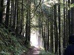 Boulder River — Washington Trails Association - Snohomish