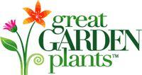 Drought Proof Plants - 100's of Perennials & Shrubs like Sedums, Coneflowers & more.