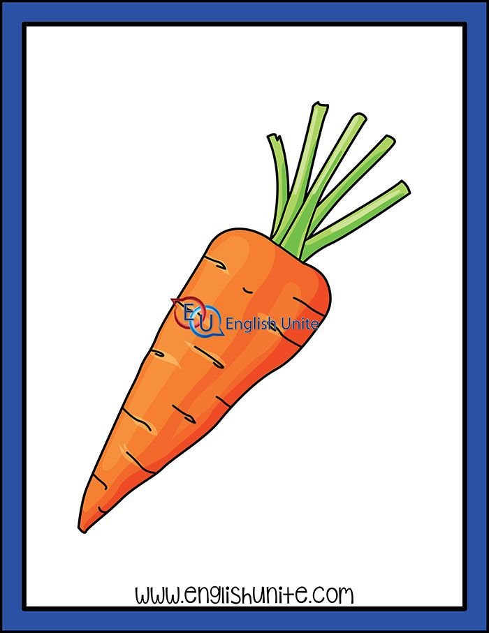 Vegetable Carrot With Images Clip Art White Image Black