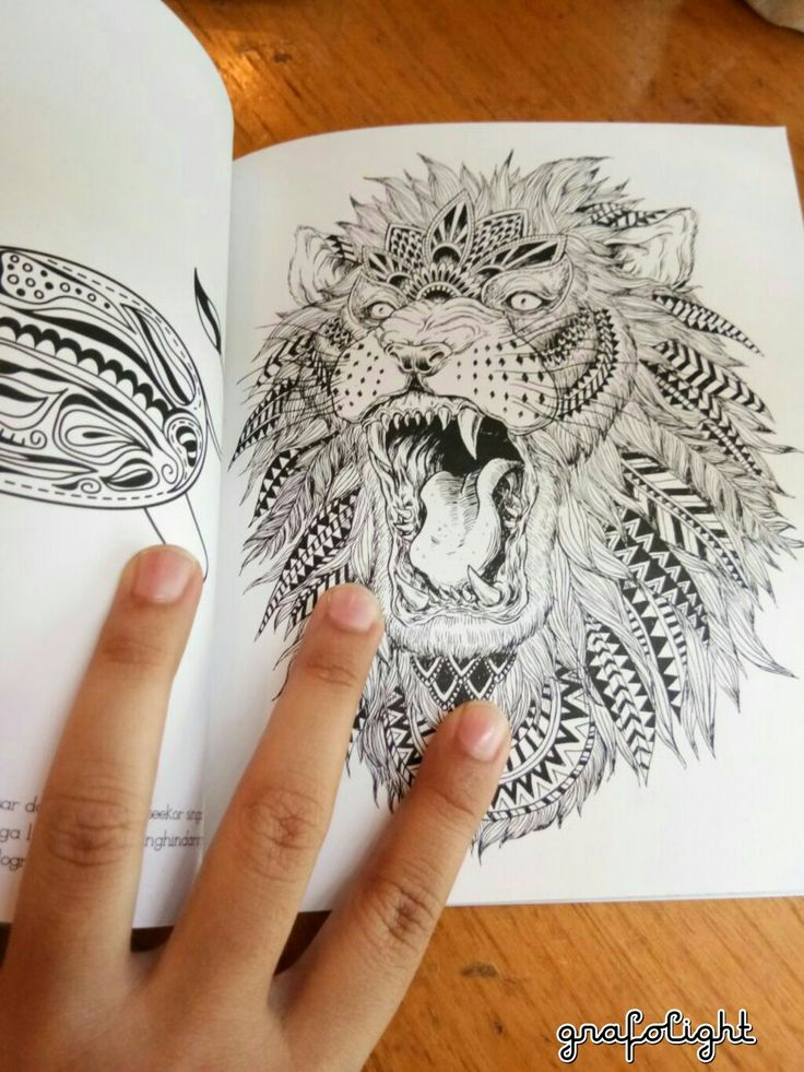 Lion in the book