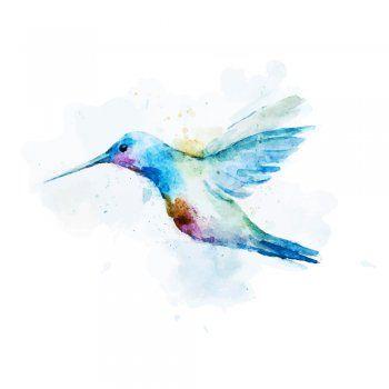 ¿Por qué el colibrí es ligero como una pluma? ¿Por qué es capaz de mantenerse en el aire sin desplazarse? ¿Cómo nació el primer colibrí? No te pierdas esta preciosa leyenda maya sobre uno de los pájaros más hermosos.