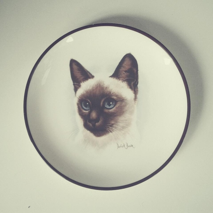 Cat plate, bought in Greenwich, London    #wysokipolysk #fleastyle