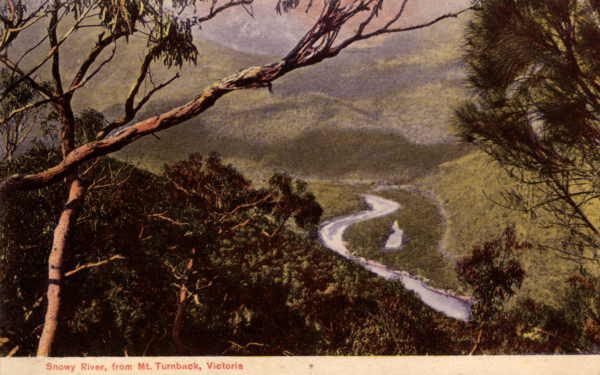 Snowy River, from Mt. Turnback, Victoria [picture] , State Library of Victoria
