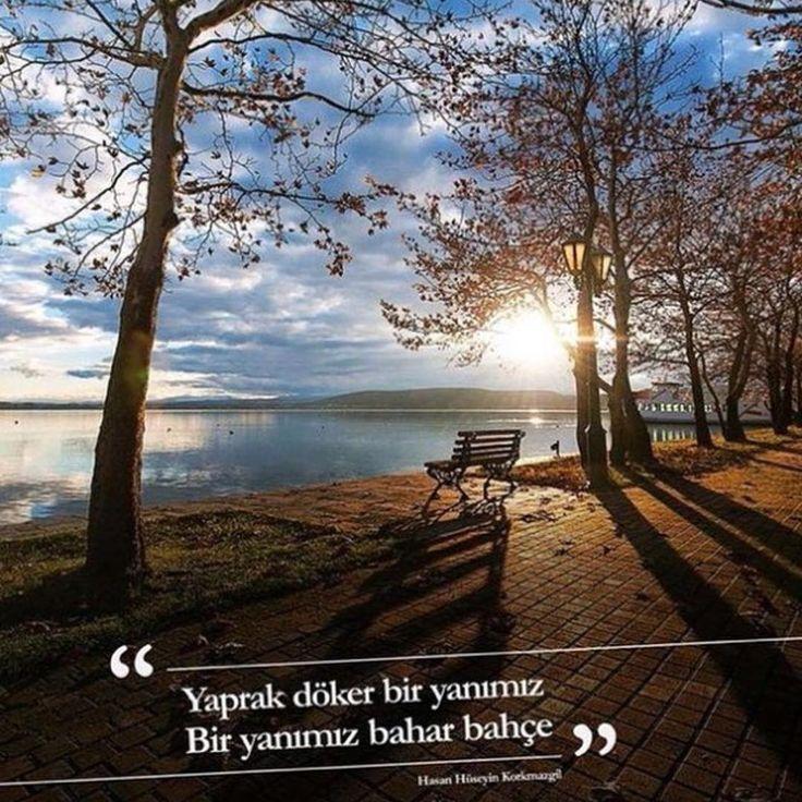 Yaprak döker bir yanımız  Bir yanımız bahar bahçe.   - Hasan Hüseyin Korkmazgil / Öyle Bir Yerdeyim Ki  #sözler #anlamlısözler #güzelsözler #manalısözler #özlüsözler #alıntı #alıntılar #alıntıdır #alıntısözler #şiir #edebiyat