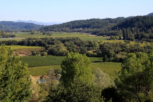 Napa Valley, from the Sterling Winery (they have a fun tour there.)
