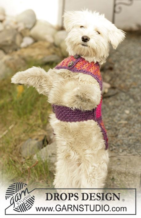 "Suzi - DROPS dog blanket in ""Eskimo"" - Free oppskrift by DROPS Design"