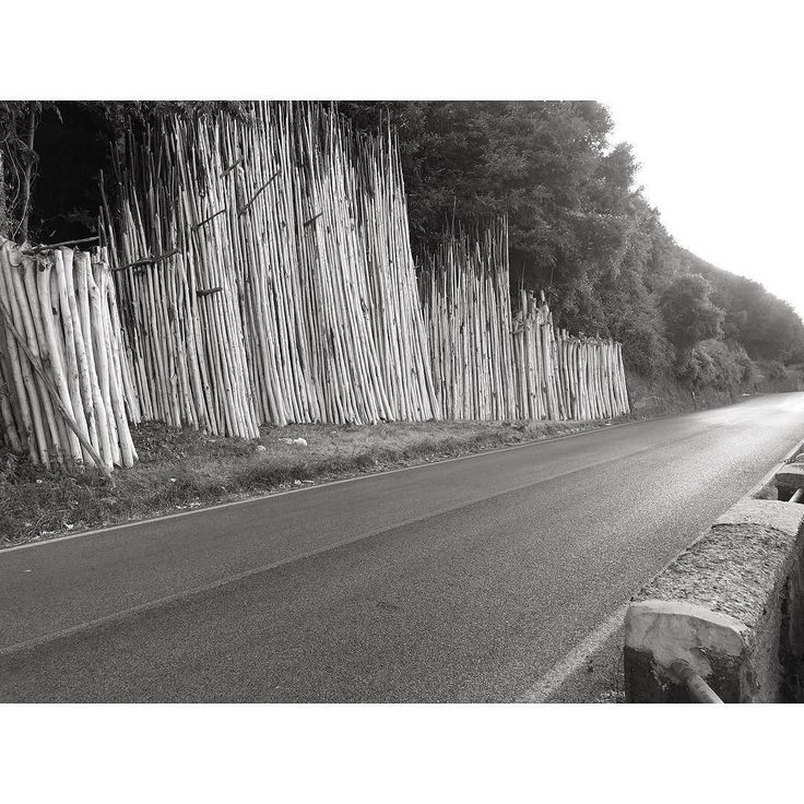 #black #street #blackandwhiteonly #streetstyle #style #photography #blackandwhite #streetphotography #bnw_society #blackandwhitephoto #asphalt #road Powered by @ilraggio