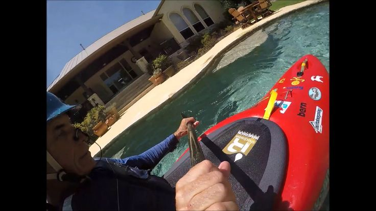 Seal Slaps Kayaker in the Face with Live Octopus: Video ...