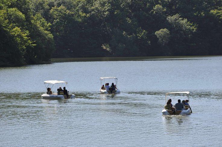 Balade en bateau à moteur sur le lac de Mervent. ©Pascal Baudry pour Sud Vendée Tourisme. Plus d'info : www.sudvendeetourisme.com