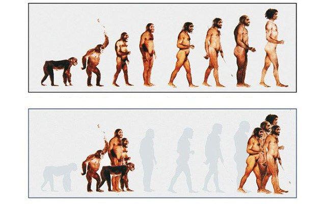 Bisher wurde wissenschaftlich vertreten, dass die menschliche Entwicklung in einer Linie bzw. als Stufenleiter verlaufen ist. Neue Fossilienfunde aus Kenia zeigen jedoch das Gegenteil: eine über 50…