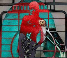 Redbird by greenrosestormcloud