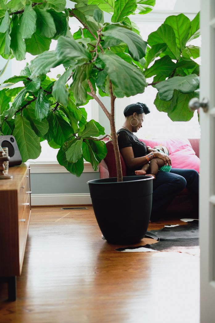 On The Hunt For A Really Big Garden Pot To Repot My Fiddle Leaf Fig Fiddle Leaf Fig Big Garden Plants