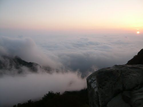 کوه تای