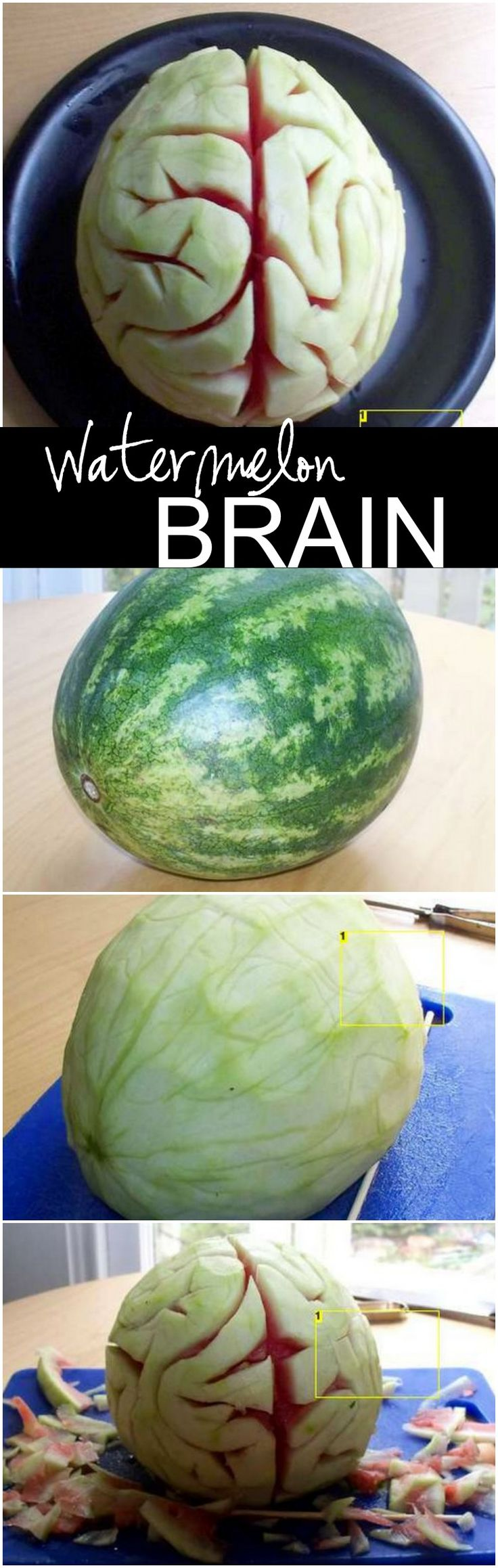 Make a Watermelon Brain for Halloween