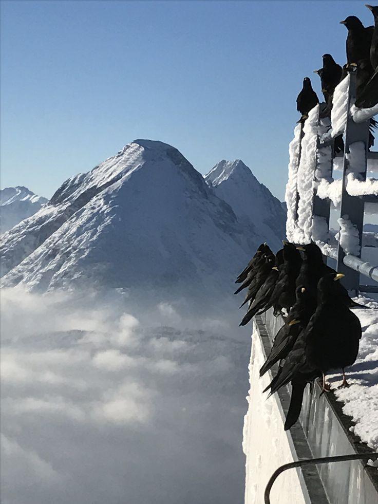 Joch, Seefeld in Tirol, Austria