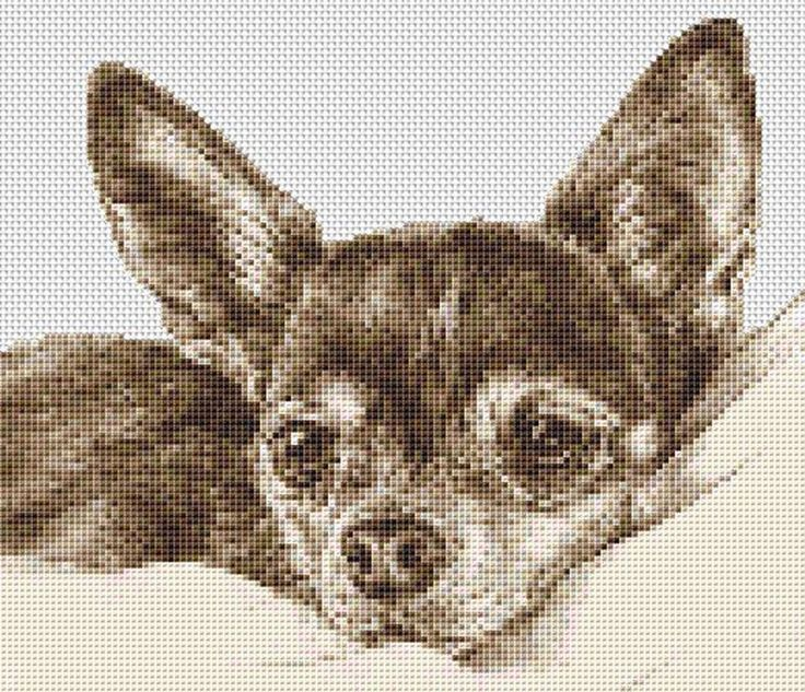 Chihuahua Dog Counted Cross Stitch Kit Animals  9  x 8  Free P&P