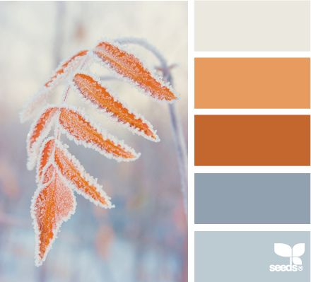 frosted autumn could be a great Thanksgiving/Christmas decor transition with crystals and glimmering metallics.