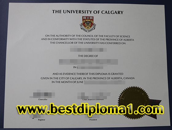 The 25+ best Fake certificate maker ideas on Pinterest Top paid - online birth certificate maker