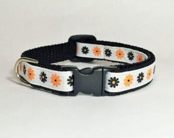 El estilo básico para collar gato pequeño collar para perros