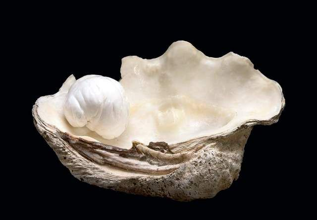 Palawan Princess, world's second largest pearl found in Palawan, Philippines.