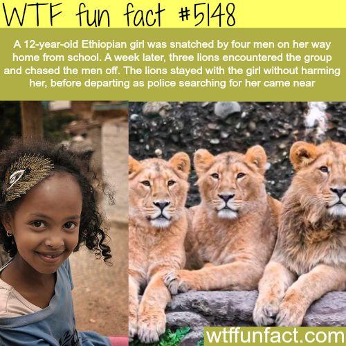 ethiopian fuckin girls picture