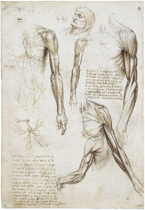 Leonardo Da Vinci Leonardo Da Vinci In 2019 Pinterest Leonardo