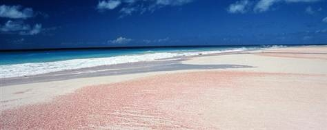Antigua and Barbuda rainbow beach with pink sand... I want to be here so badly!!! I will go here one day!!!