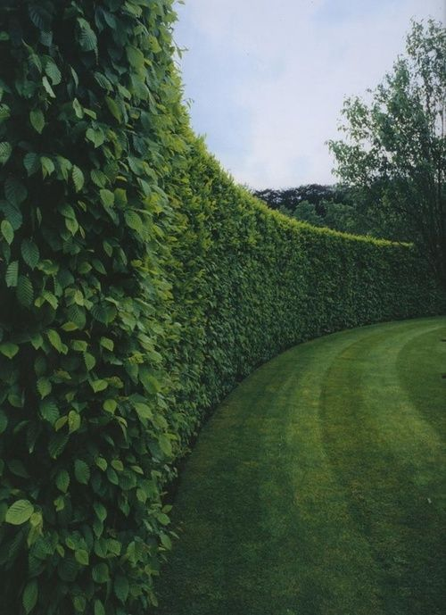 well-manicured.