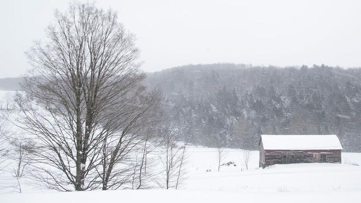 SCRANTON, PA - MARCH 14: Snow blankets a farm in rural northeastern Pennsylvania following heavy snowfall on March 14, 2017 in Scranton City. A blizzard is forecast to bring more than a foot of snow and high winds to up to eight states in the Northeast region, as New York and New Jersey are under a state of emergency. School districts across the entire region were closed and thousands of flights were canceled. (Photo by Brett Carlsen/Getty Images)