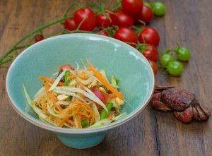 Vietnam papaya salat