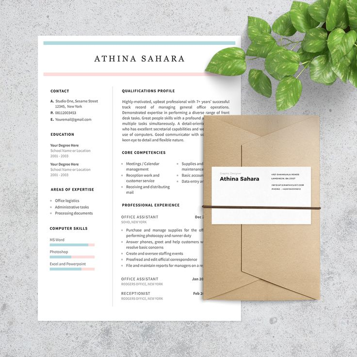 Clean Resume Template and Professional Resume Template