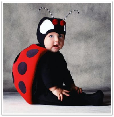 Google Image Result for http://www.the-essential-infant-resource-for-moms.com/image-files/tom-arma-halloween-costumes-ladybug.jpg