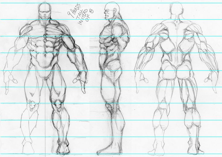 Best 25+ Character model sheet ideas on Pinterest Character - how to create a signup sheet