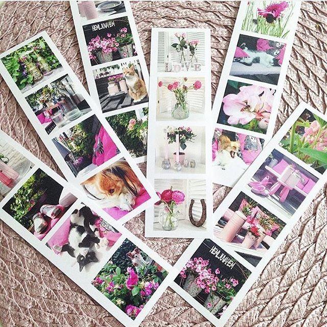 Vi flirtar lite med våren via @_marias_bilder_ vars bild är Printa Pic of the Day 🌺 👏🏼 Tagga dina Printa-inlägg med #printapicoftheday så har du chansen att synas i vårt flöde och inspirera andra printafans. printasquare.com #framkalla #printaphoto #foto #inspiration #inredmedbilder #printyourstory #printavintage