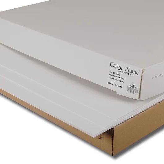 Canson Carton Mousse  Pannelli rigidi e leggeri composti di schiuma di polistirene.  Economico, il Carton Mousse offre le stesse caratteristiche e la stessa facilità d'uso del Carton Plume. Senza CFC, il Carton Mousse rispetta l'ambiente. Per presentazione, decorazione, bozzetti in 3D e pannelli per stand. Perfettamente piano anche in grandi dimensioni, può essere tagliato e segato facilmente con una notevole precisione per realizzare tutti i tipi di lavori, dal più semplice al più…