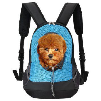 14 best Pets images on Pinterest   Hunde, Hunde träger und Haustiere