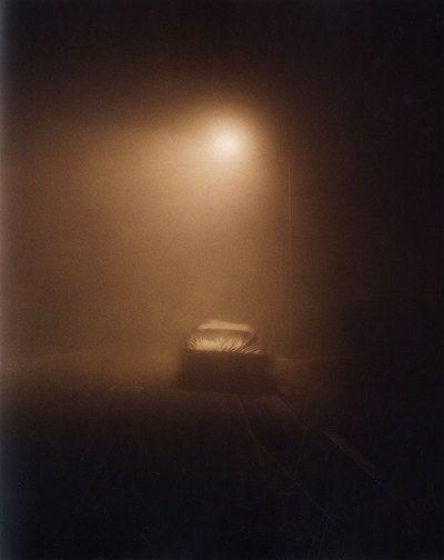 Todd Hido: Roaming [SIGNED] , Todd HIDO, CARVER, Raymond - Rare  Contemporary Photography Books - Vincent Borrelli, Bookseller