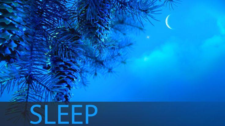 8 Hour Sleep Music For Insomnia: Deep Sleep Music, Sleeping Music, Help ...