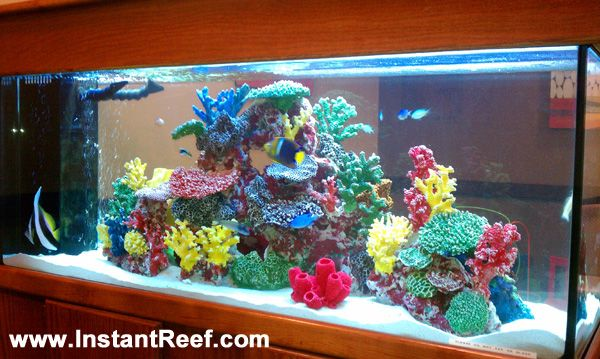 90 Gallon Marine Fish Tank with live rock & fake coral reef marine tank