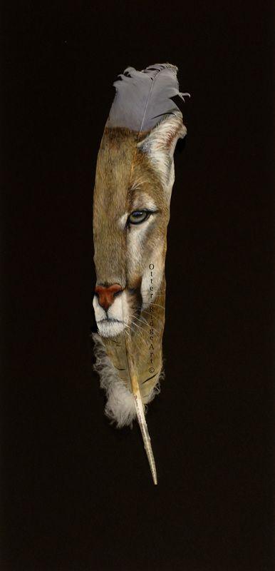 Love this feather. Galleries - Debra Otterstein Wildlife Artist