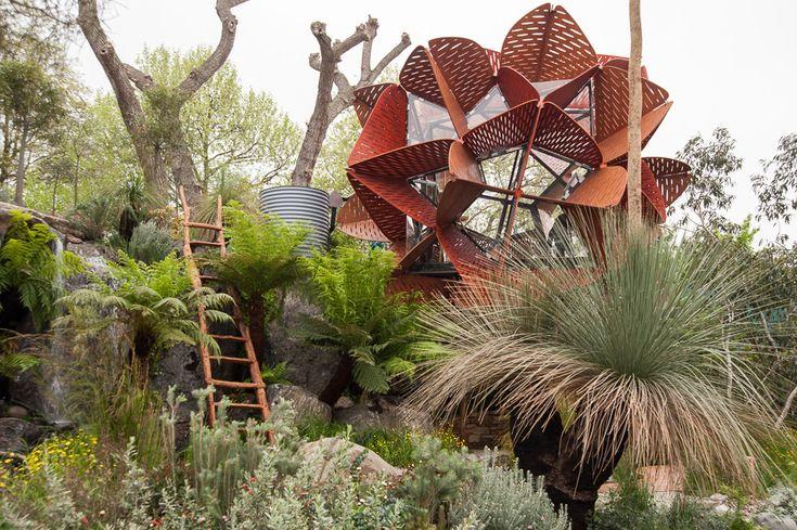 Trailfinders Australian Garden presented by Flemings / Best in Show / Chelsea Flower Show 2013