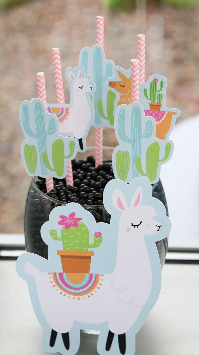 Llama Party Ideas Whole Llama Fun Decorations And Fiesta Party Supplies Bigdotofhappine