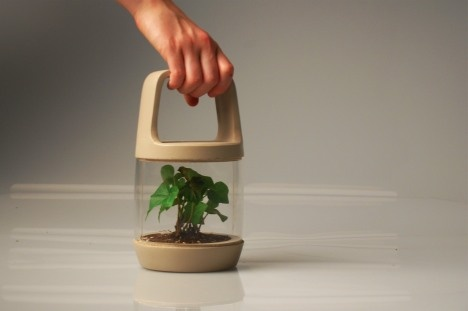 Lantern concept grows sapling trees while you hike!